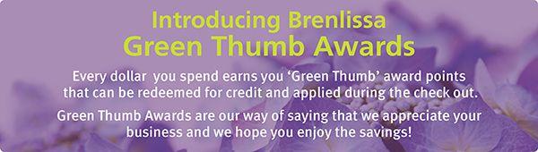 Brenlissa Awards