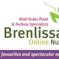 Brenlissa Logo