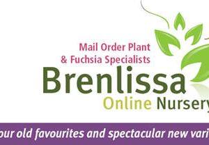 Brenlissa-Logo