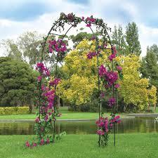 Garden-arch-garden-trend-3290-mail-order-nursery