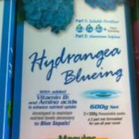 Hydrangea-bluing