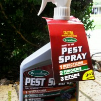 Pest-Spray