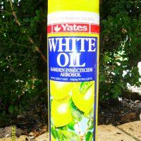 White-oil