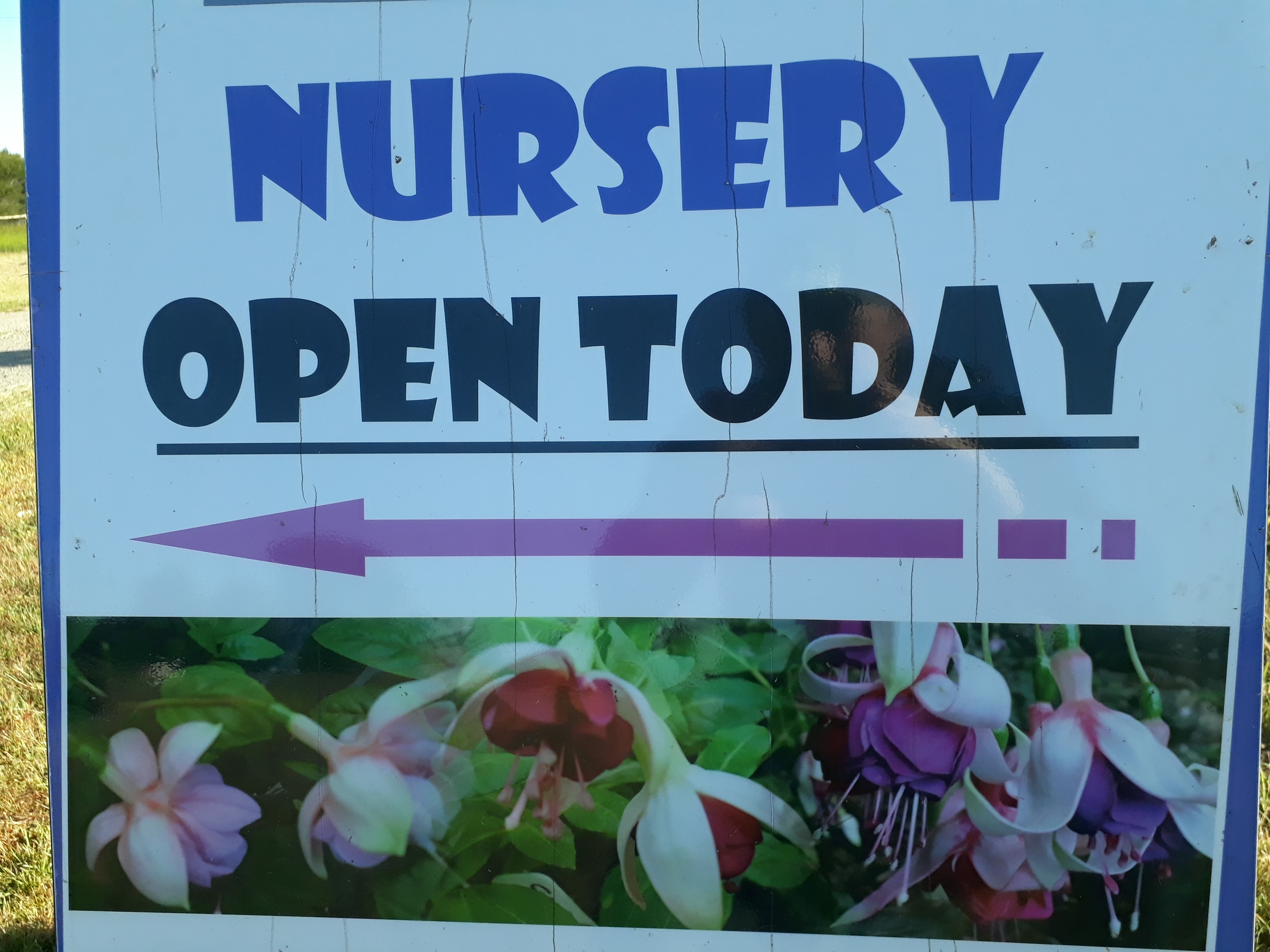 Our Nursery pick-up prices %off